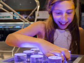 The Flandrau Science Center and Planetarium is now open Thursday-Sunday.