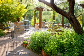 Catch the last five Science Cafes this month, including one on Dec. 5 at the Tucson Botanical Gardens.