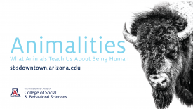 """The College of Social and Behavioral Sciences' Downtown Lecture Series this year will explore the theme """"Animalities."""" The series' Oct. 10 talk is titled """"The Personhood of Bison."""""""