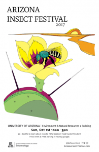 An illustration of this year's theme insect, the honey-bellied green metallic sweat bee, is featured on the poster for the 2017 Arizona Insect Festival.