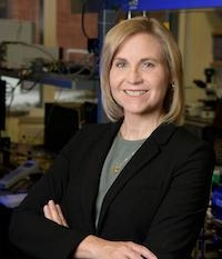 Jennifer Barton, director of the BIO5 Institute