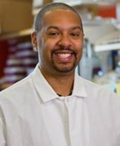 Michael Johnson, assistant professor of immunobiology
