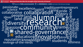 "This word cloud represents responses to the question ""What word best describes the University of Arizona?"""