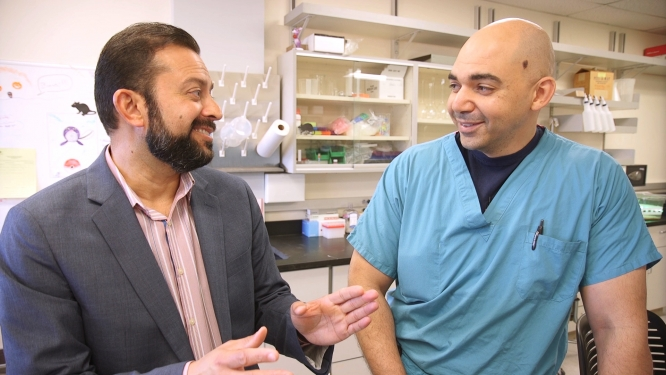 Mohab Ibrahim and his colleague, Rajesh Khanna, UA associate professor of pharmacology, collaborate on pain research.