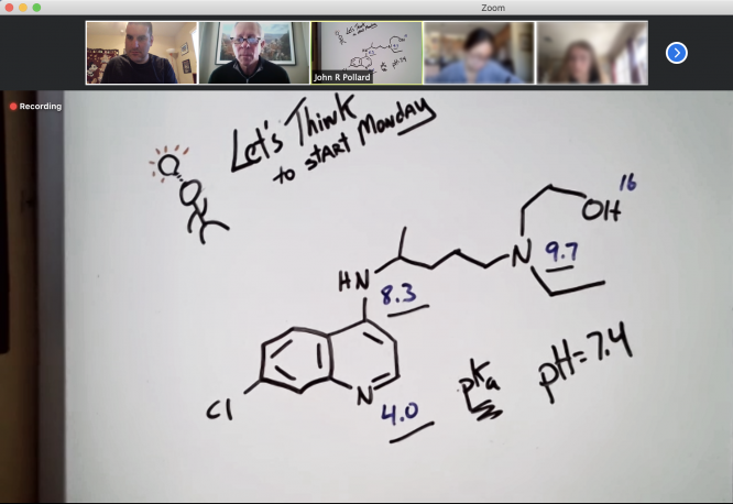President Robert C. Robbins, second from left at the top, was a guest in an online class being taught by John Pollard, associate dean for academic affairs and curricular innovation for the Honors College and associate professor of practice.