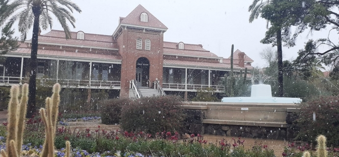 Mia Schnaible, administrative associate in the Department of Biomedical Engineering, captured this photo of snow falling on Old Main.