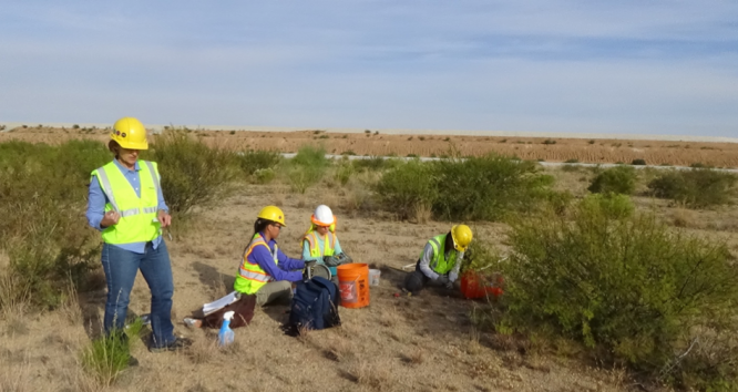 Julia Neilson (standing), director of the Center For Environmentally Sustainable Mining, takes soil samples on a 400-acre tailings dam at the ASARCO Grupo Mexico Mission Mine complex in Sahuarita. With her (from left) are Lia Ossanna, research specialist, Catherine Fontana, research specialist senior, and Lydia Jennings, doctoral student. (Photo by Mari Cleven/Research, Innovation and Impact)