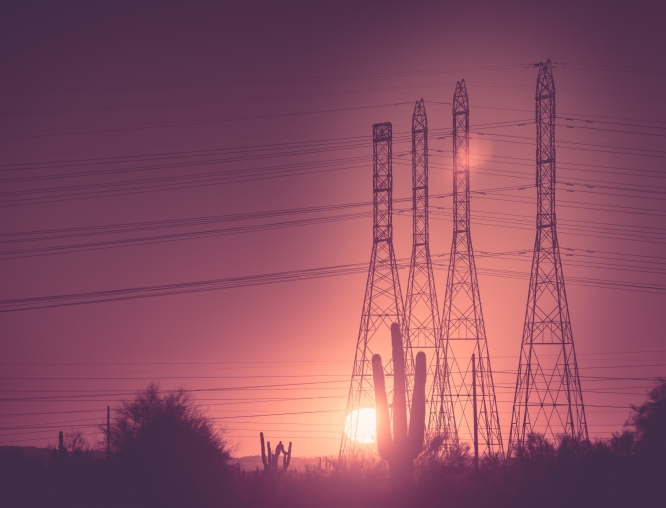 The Arizona Business Resilience Initiative was launched in 2015 with a $100,000 grant from the UA Office of Research, Discovery & Innovation to focus on areas of concern to electric utilities operating in the arid Southwest.