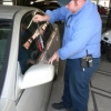 The Motorist Assistance program sends officers to rescue keys locked in drivers' cars on campus.