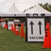 Signs mark the path for the drive-through vaccination clinic on the University of Arizona Mall. (Photo by Chris Richards/University of Arizona)